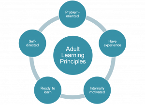 The Basics of Adult Learning Theory