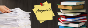 Differences Between Reading & Studying Class Assignments